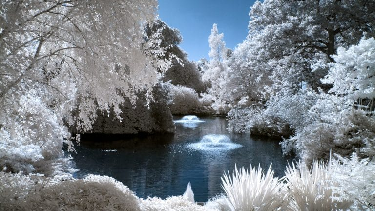End to End Infrared Photography Guide